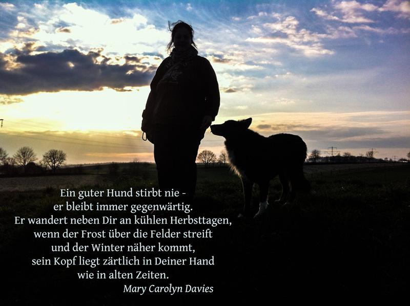 sprüche hund tot About Me   Glücklich leben mit Hund sprüche hund tot